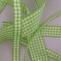 Meadow Gingham Ribbon